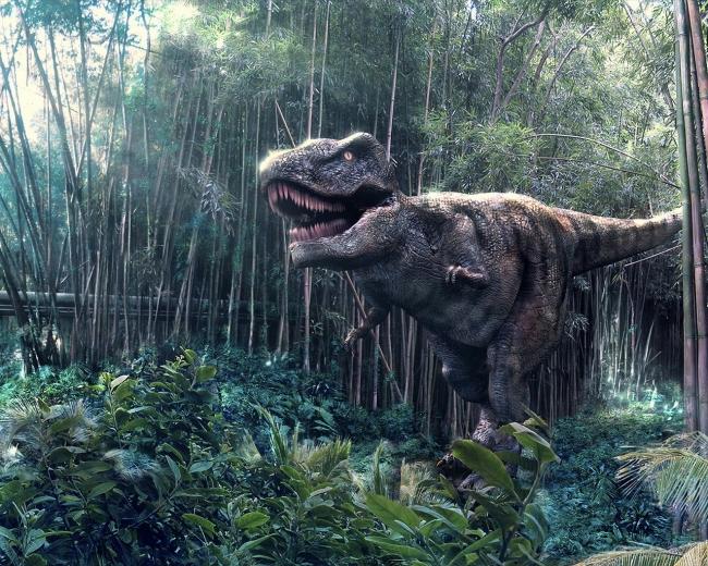 Тираннозавр: массивные зубы