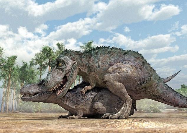 Тираннозавр: спаривание