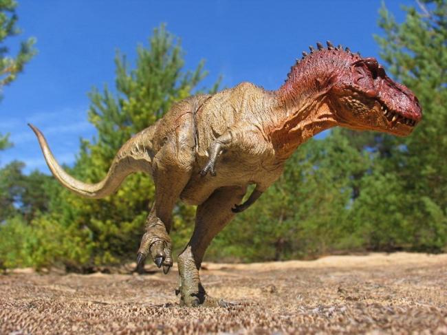 Тираннозавр: размеры