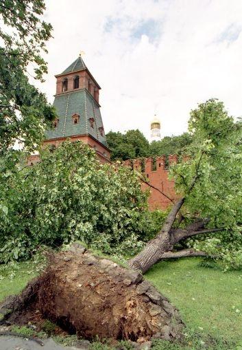 Ураганы в Москве: последствия 1998 года