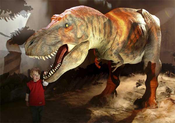 Динозавры - музей