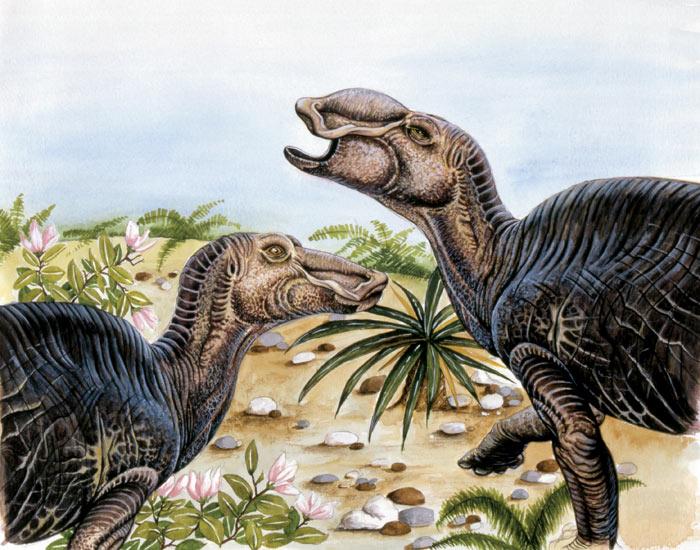 Динозавры - размножение