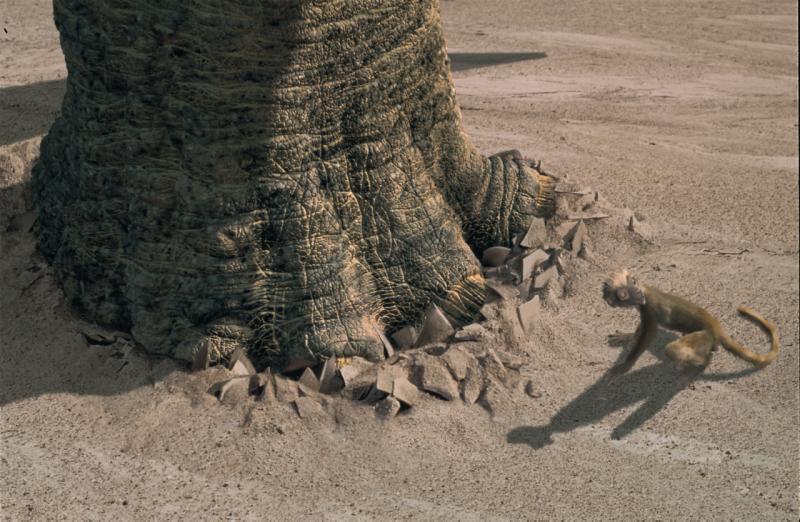 Динозавры - особенности видов