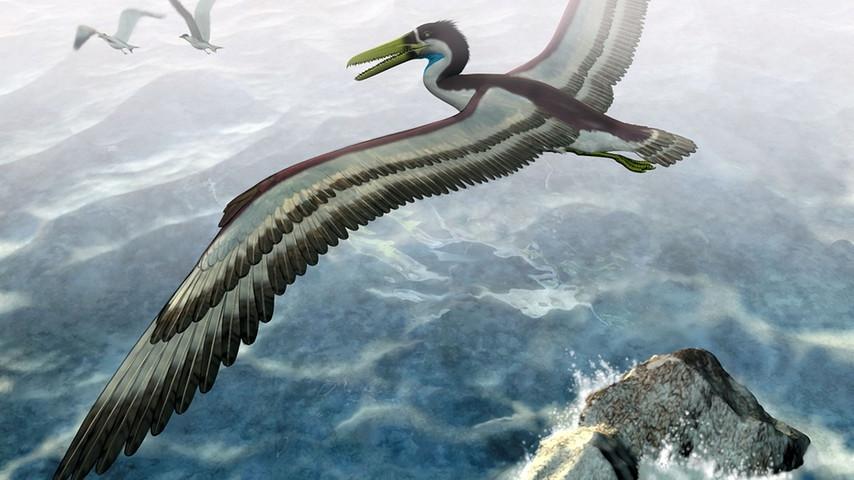 Динозавры - археоптериксы