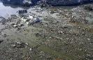 Цунами в Японии - материальный ущерб