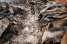 Цунами в Японии - разрушительная стихия