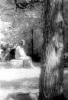 Жизнь после смерти - призрак на кладбище