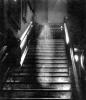 Жизнь после смерти - призрак «Леди в коричневом»
