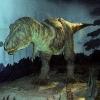 Тираннозавр и его конечности