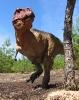 Тираннозавр - охотник