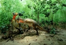 Динозавры - уничтожение метеоритом