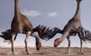 Динозавры - гигантораптор