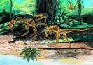Эволюция земли