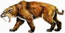 Доисторические хищники: саблезубый тигр