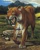 Саблезубый тигр - гомотериум