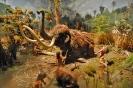 Охота на мамонтов - предположения