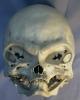 Инопланетяне - необычный череп