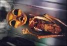 Инопланетяне - скелет