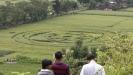 Влияние кругов на полях на человека