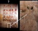 Происхождение человека от инопланетян - искаженная информация