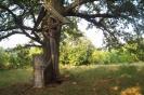 Капища древних славян