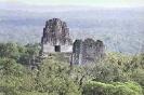 Пирамиды майя: национальный Парк Тикаль
