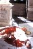 Убийство Цезаря - кровавая трагедия