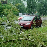 Ураганы в Москве: примета времени