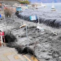 Япония после цунами – есть ли жизнь на