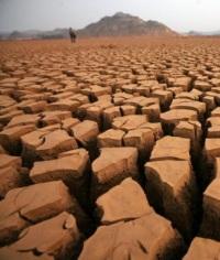Засуха в Африке: «чёрный континент» страдает от жары больше всех