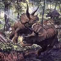 Травоядные динозавры: размер имеет значение