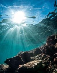 Подводные глубины и их тайны