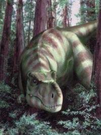 Тираннозавр: «звезда» среди динозавров