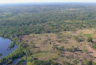 Кольца Амазонки