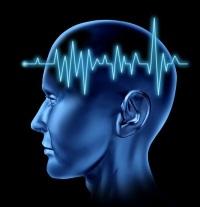Компьютерные программы для развития мозга