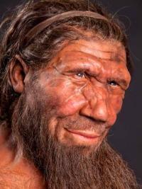 история происхождения человека