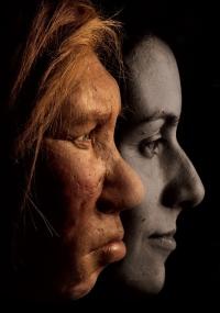 Гіпотезу про походження людини висунув