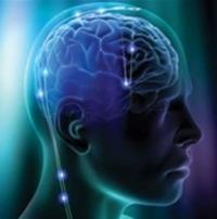 Методика развития мозга: возможности памяти