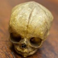 скелеты новорожденных из Афин
