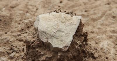 древнейшие каменные инструменты