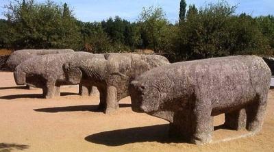 быки Гисандо