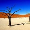 Не станет ли Земля пустыней - новая напасть