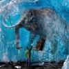 Вымершие животные: упущенная красота мира