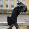 Анемофобия – страх ветра