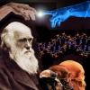 Теория эволюции: отвлечённые рассуждения или самый насущный вопрос