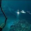 Пять невероятных вещей, обнаруженных под водой