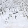 Снегопад в США: снова глобальное потепление виновато?