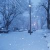 Снегопад: не только погодное явление, но и стихийное бедствие