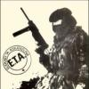Баскские террористические организации - сепаратистские идеи