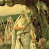 Кельтские друиды: под ореолом тайны